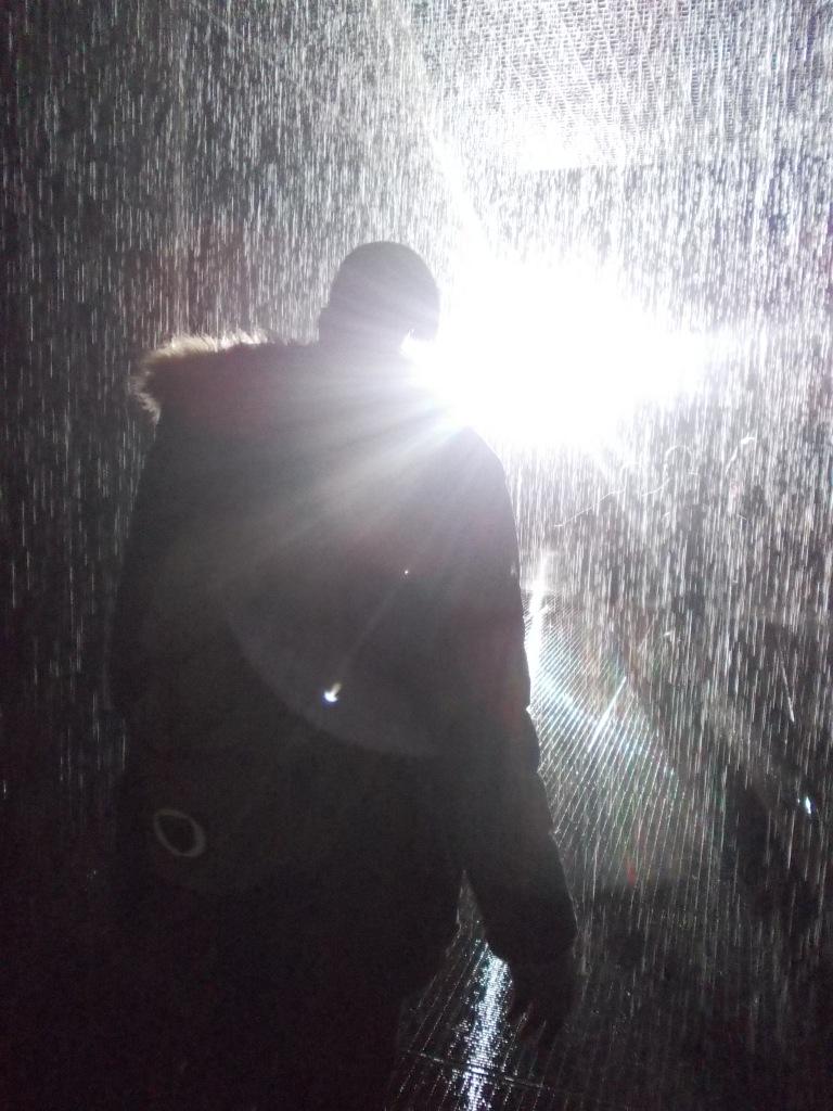 Walking through the Rain Room